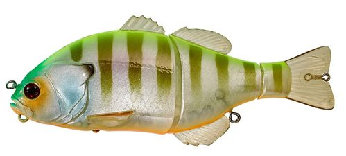 Gantarel Chart Back Bluegill